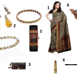 The Sensuous Sari
