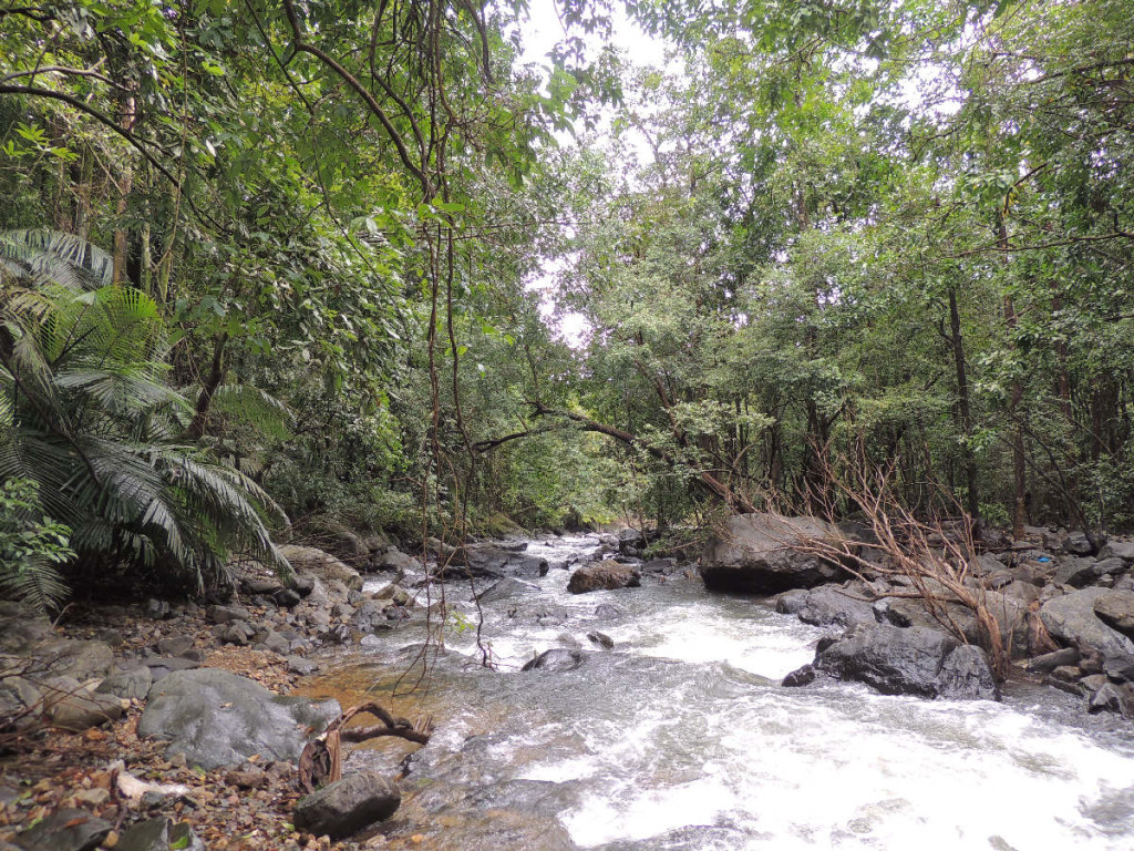 Bhagwan mahavir wildlife sanctuary