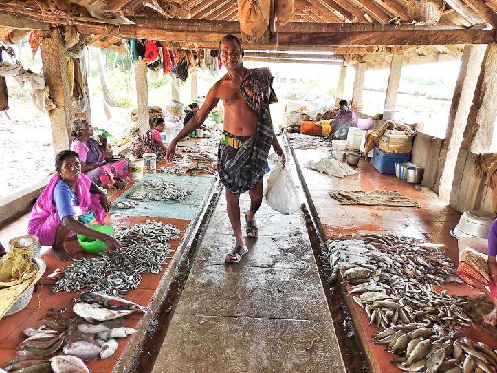 Mimisal Fish Market