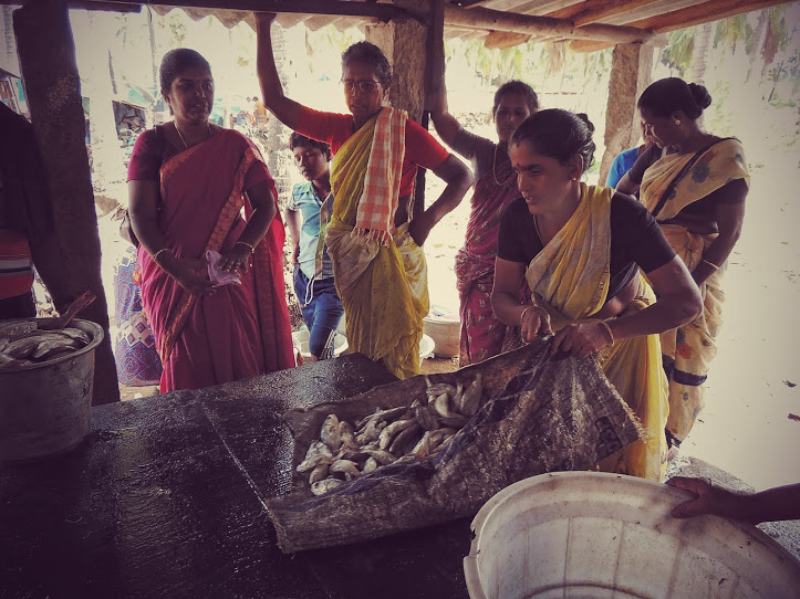 The Mimisal fishmonger with her prize