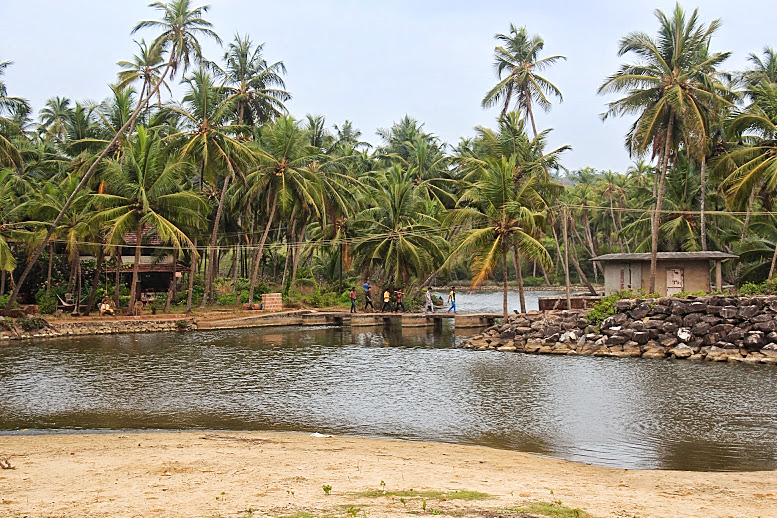 Backwaters at Thottada Beach