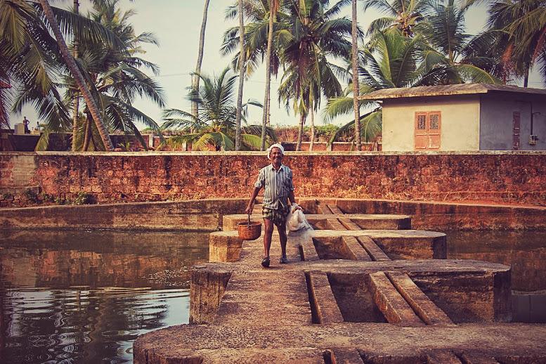 Kannur Fisherman