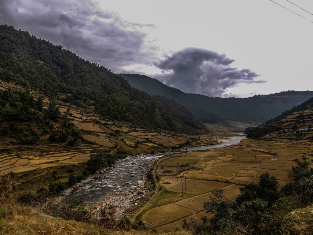 Fields in Arunachal Pradesh