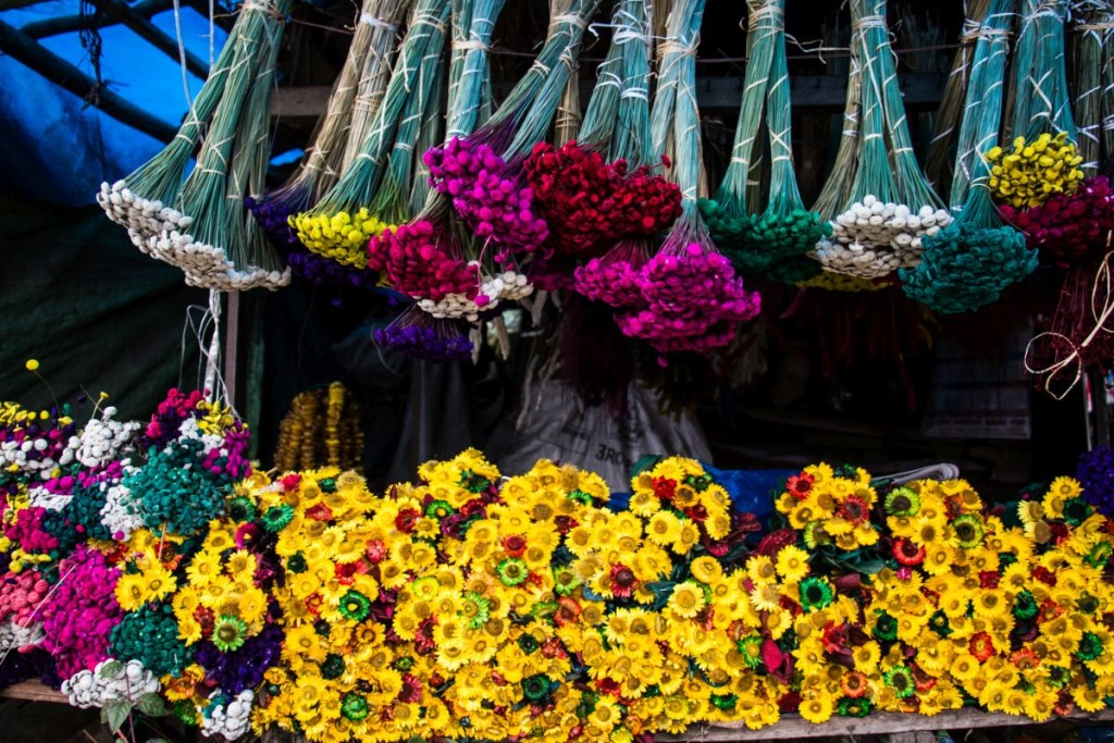 Dried and Painted Flowers in Kodai