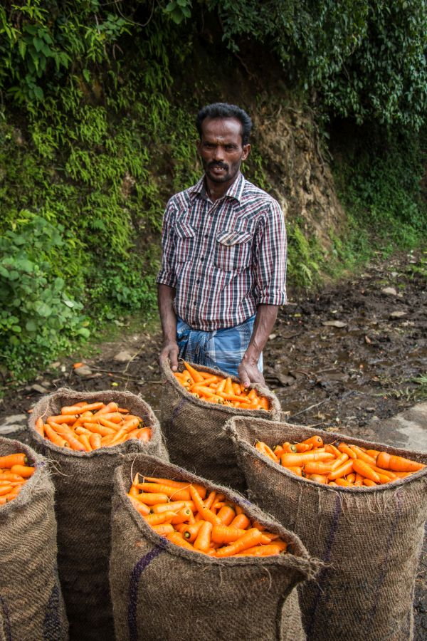 Kodai Farmer with his yield of carrots