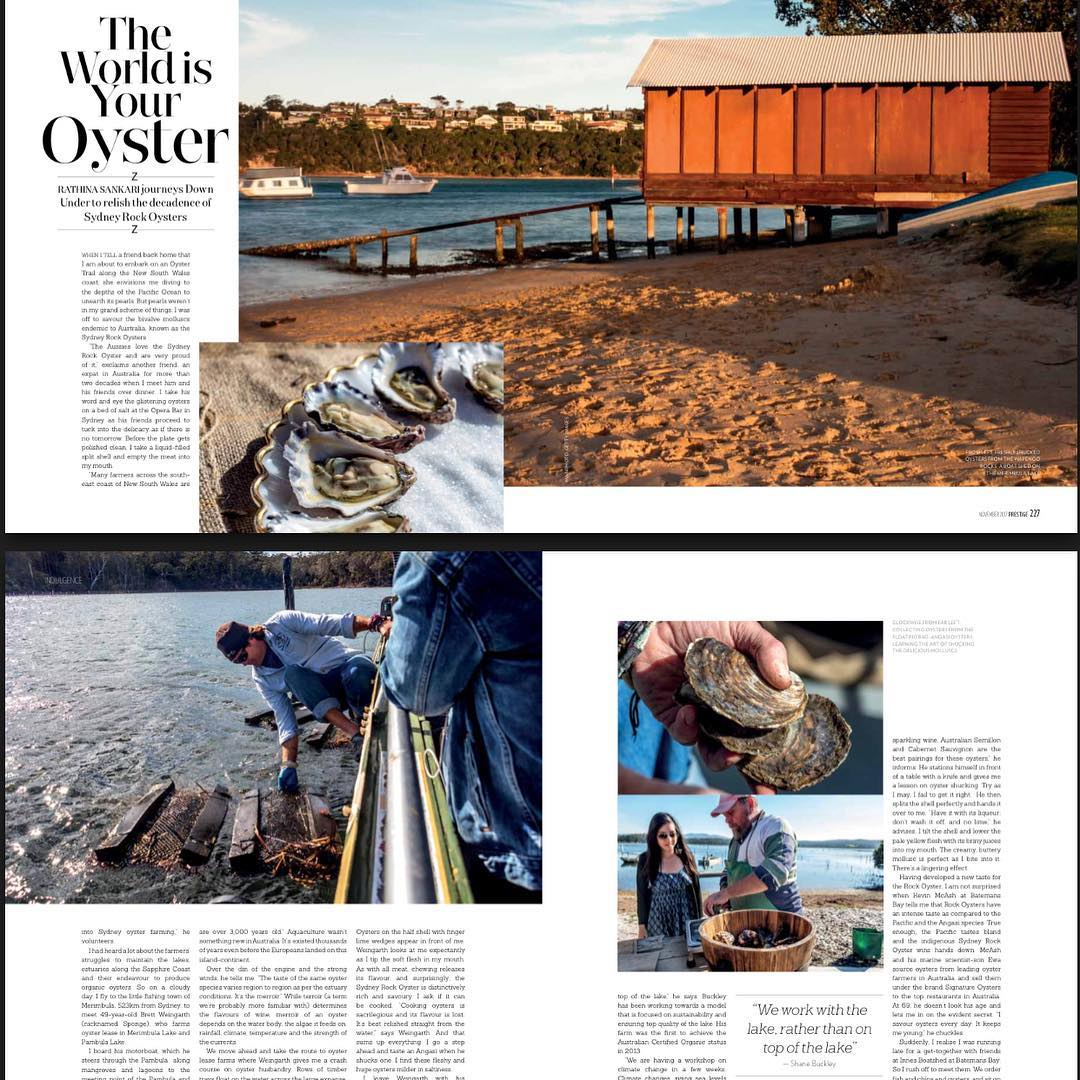 My Sydney rock oysters story published in Prestige Singapore hellip